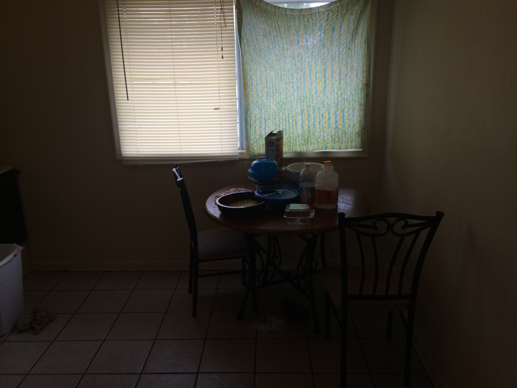The kitchen needs new blinds.
