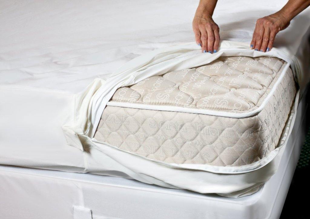 An example of a bed bug mattress protector. Image source: http://ecx.images-amazon.com/images/I/91tOi19Xo0L._SL1500_.jpg